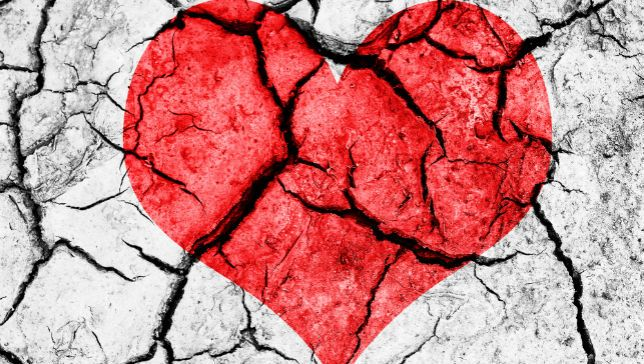 broken-heart.jpg.653x0_q80_crop-smart.jpg